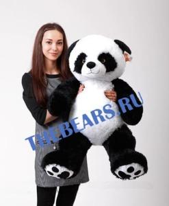 панда 110
